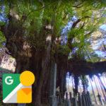 岡山の巨木ストリートビュー